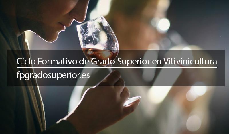 Grado de vitivinicultura